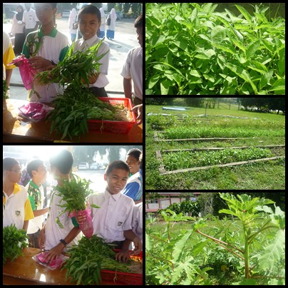 GO-GREEN CAMPAIGN : VEGETABLE PLANTING (bP myScience)